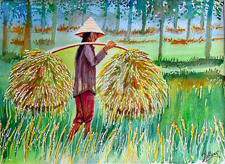 Anne D'Orion - Palanques des rizières